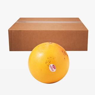 [대용량]자몽 5kg x 1박스