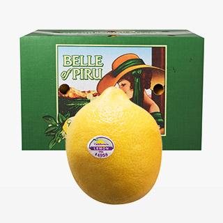[대용량]레몬 18kg x 1박스