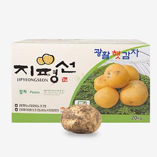 [대용량]감자 20kgx1박스