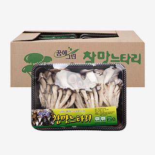 [대용량]국내산 참느타리 200gx10팩 /2kgx1박스