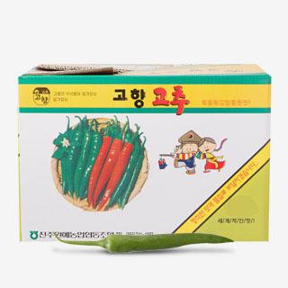 [대용량] 풋고추 5kg/10kg1박스