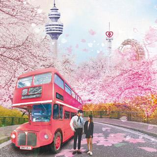 [봄즐기기] TVON 대구 이월드 별빛벚꽃축제 자유이용권 전국에서 가장 빠른 벚꽃축제