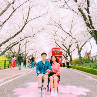 경상 대구 대구 이월드 별빛 벚꽃축제 커플권 별빛벚꽃축제 기념 선착순 특가 오픈